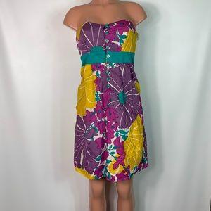 Anthropologie we love Vera late bloomer dress sz 4